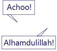 Achoo! Alhamdulillah!